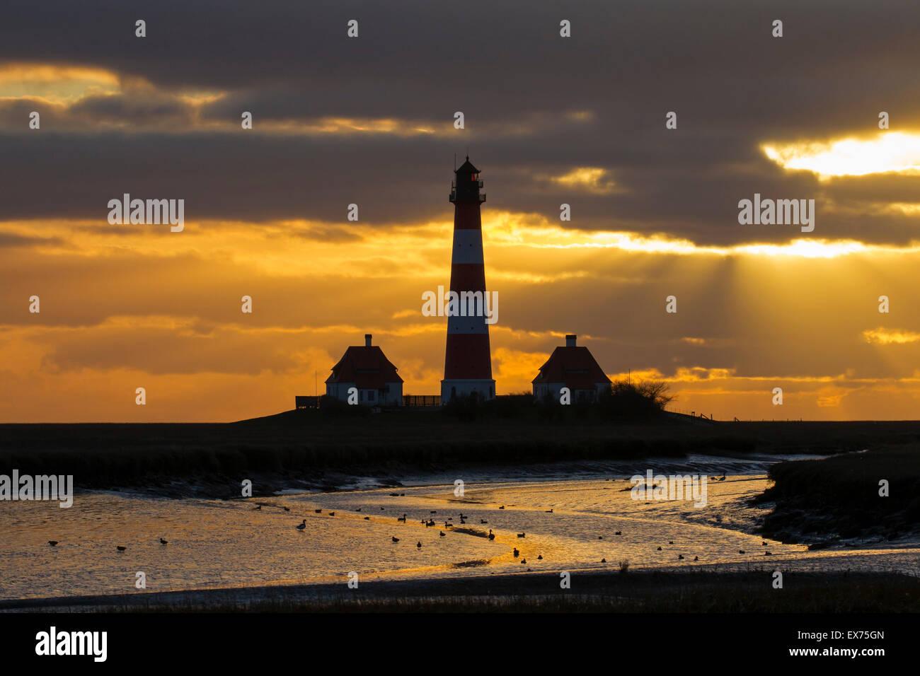 Lighthouse Westerheversand at sunset at Westerhever, Wadden Sea National Park, North Frisia, Schleswig-Holstein, Stock Photo
