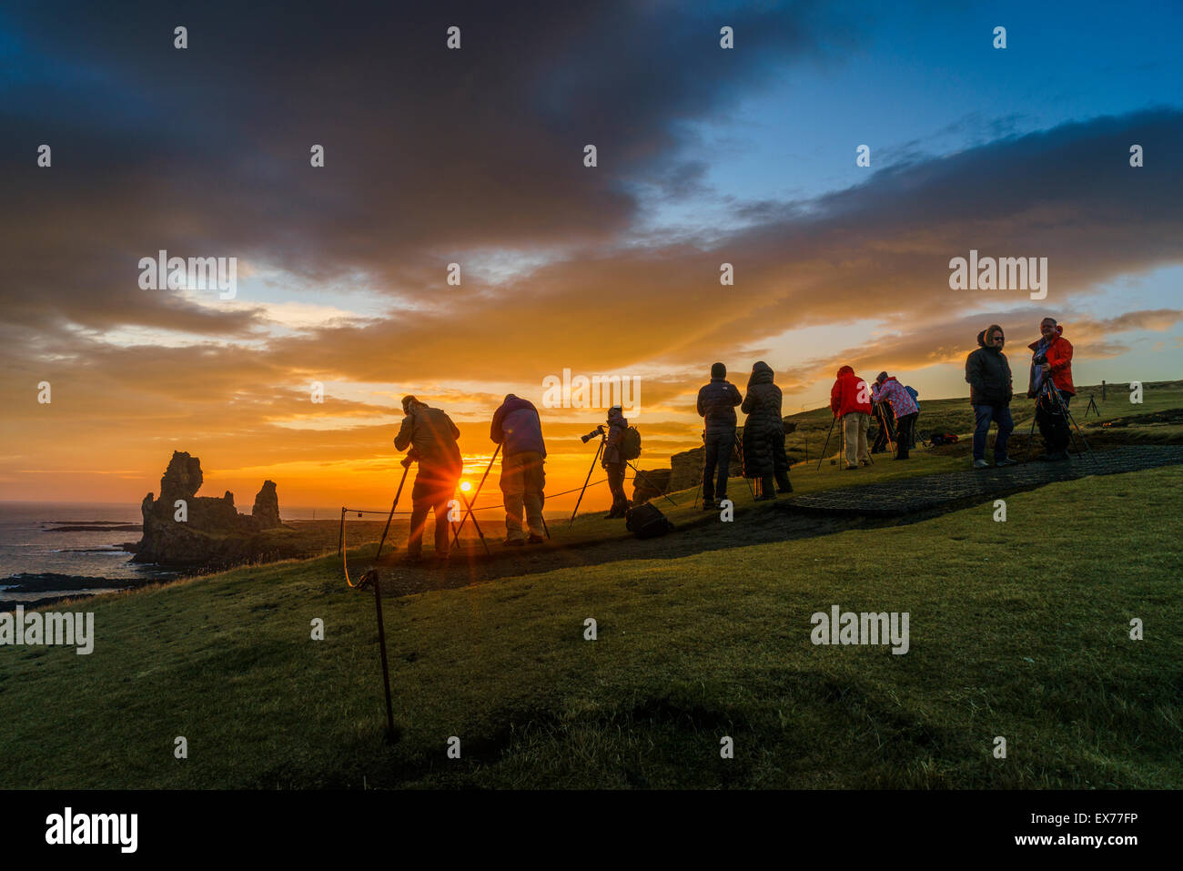 MIdnight sun and photographers by  the Londrangar sea stacks and the Thufubjarg cliffs. Snaefellsnes Peninsula, - Stock Image