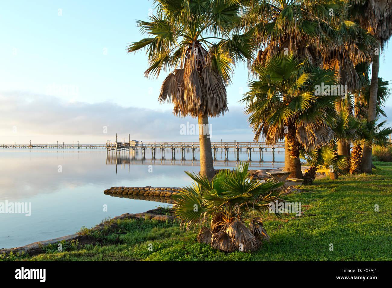 Fishing Pier, palm trees bordering Aransas Bay. - Stock Image