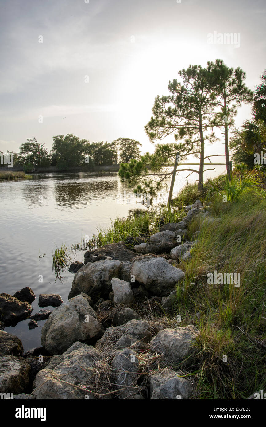 Fish Creek at Big Bend Seagrasses Aquatic Preserve, on Gulf of Mexico,Florida - Stock Image