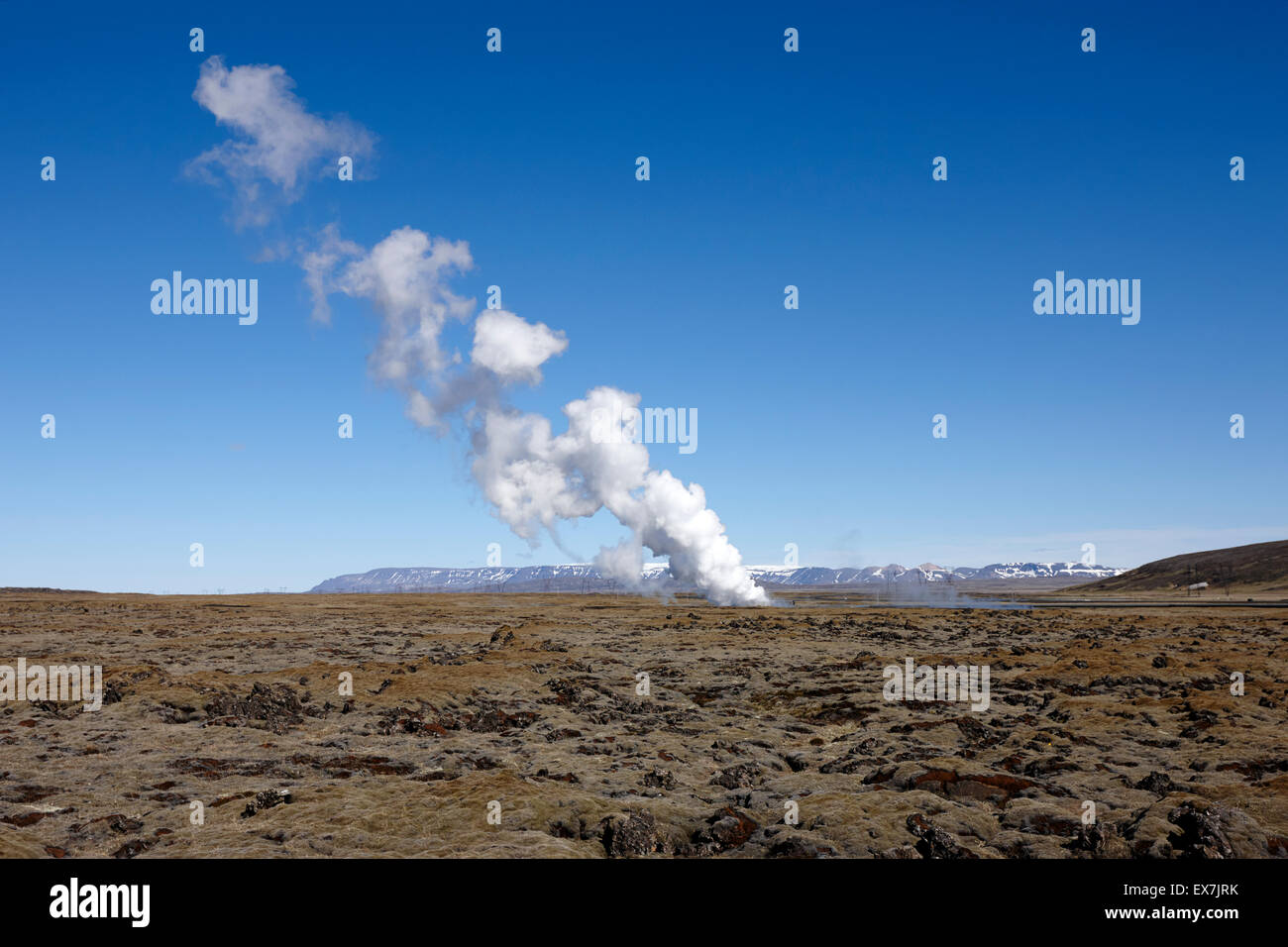 steam vent over lava fields at Hellisheidi geothermal combined heat and power station hengill iceland - Stock Image