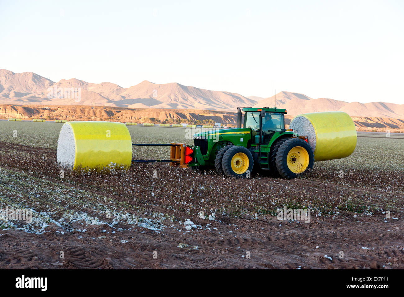 John Deere tractor transporting harvested cotton modules. - Stock Image