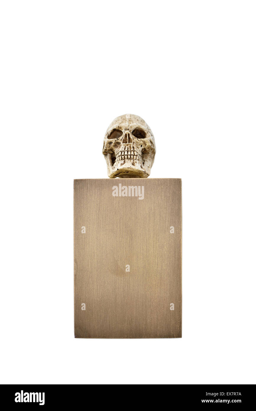 Small skull on bronze stand Stock Photo