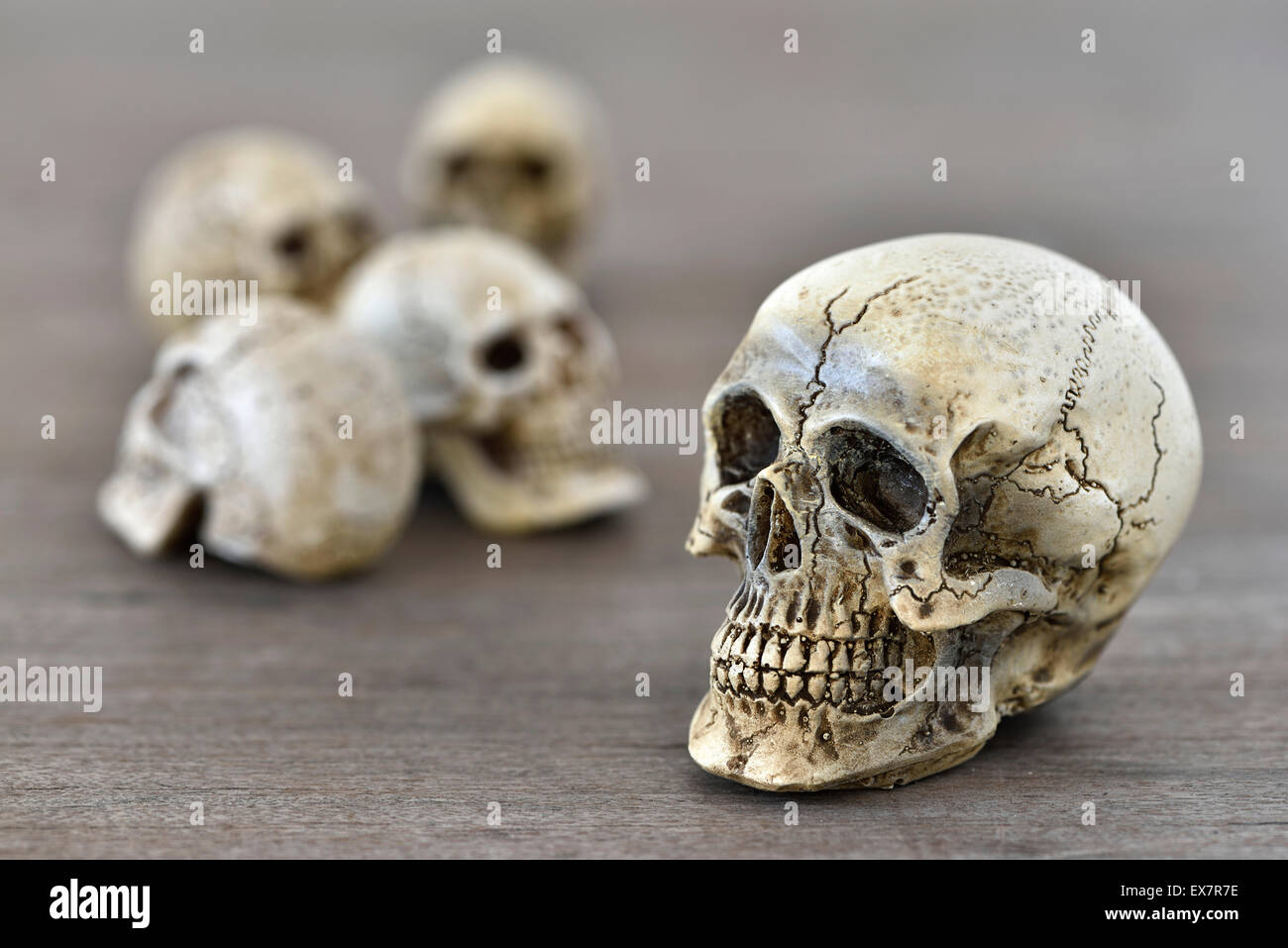 Small skull on wood table (Selective Focus) Stock Photo