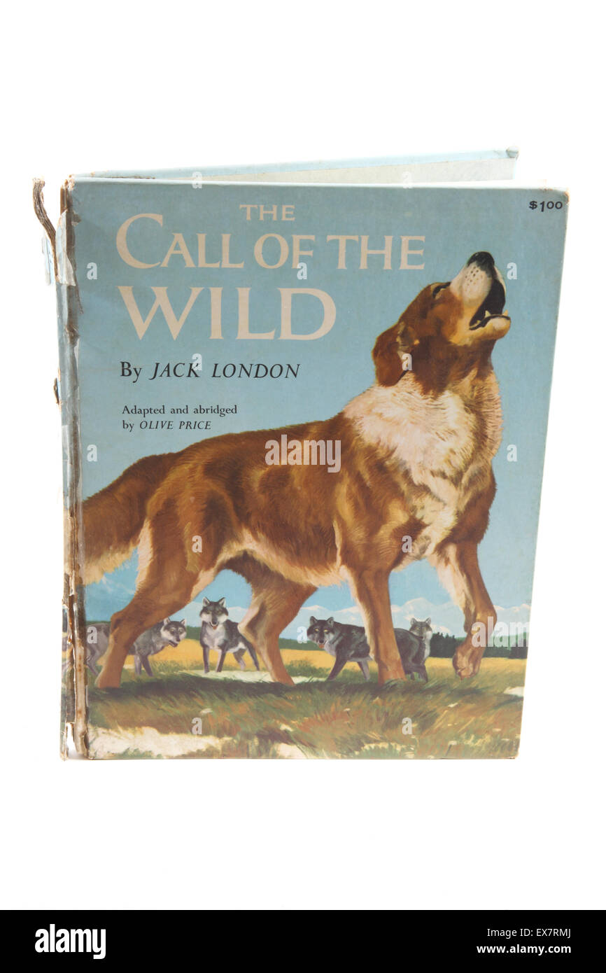 call of the wild 1935 dog