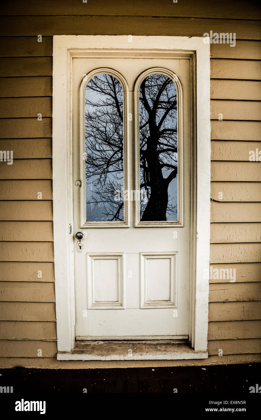 Wonderful An Old Door With Two Window Panes Reflects A Creepy Looking Tree.