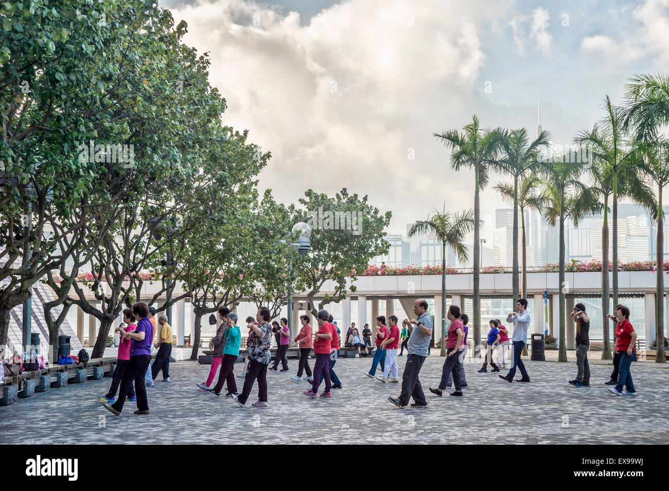 Tai Chi class in early morning in Hong Kong - Stock Image