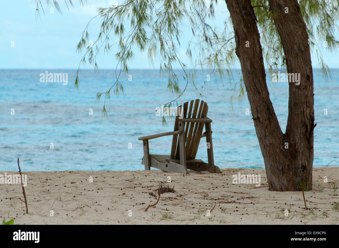chairs are under the trees on the sandy shores of the Indian Ocean, Denis island, Seychelles Stock Photo