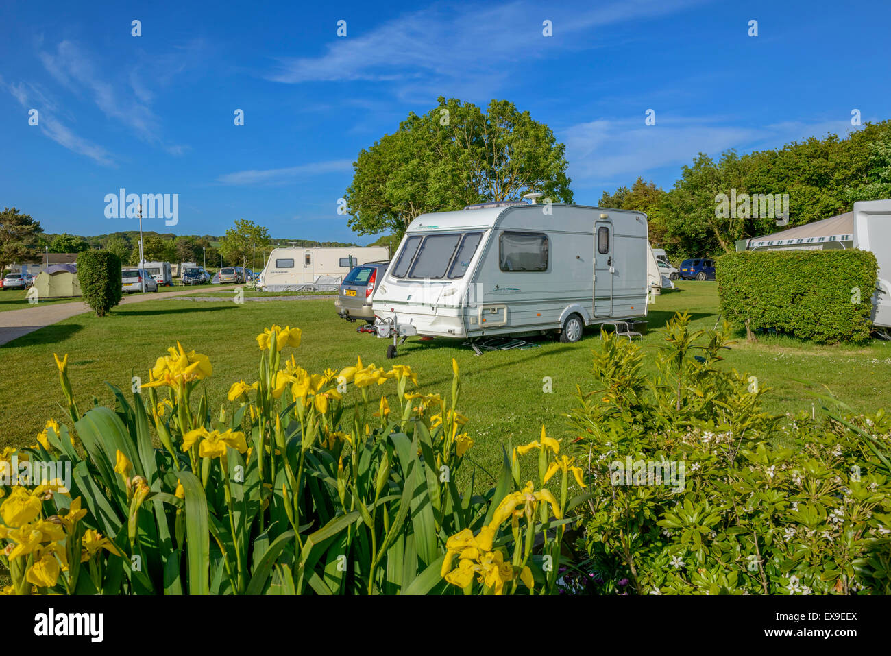 Hastings Touring Park.  East Sussex. England. UK - Stock Image