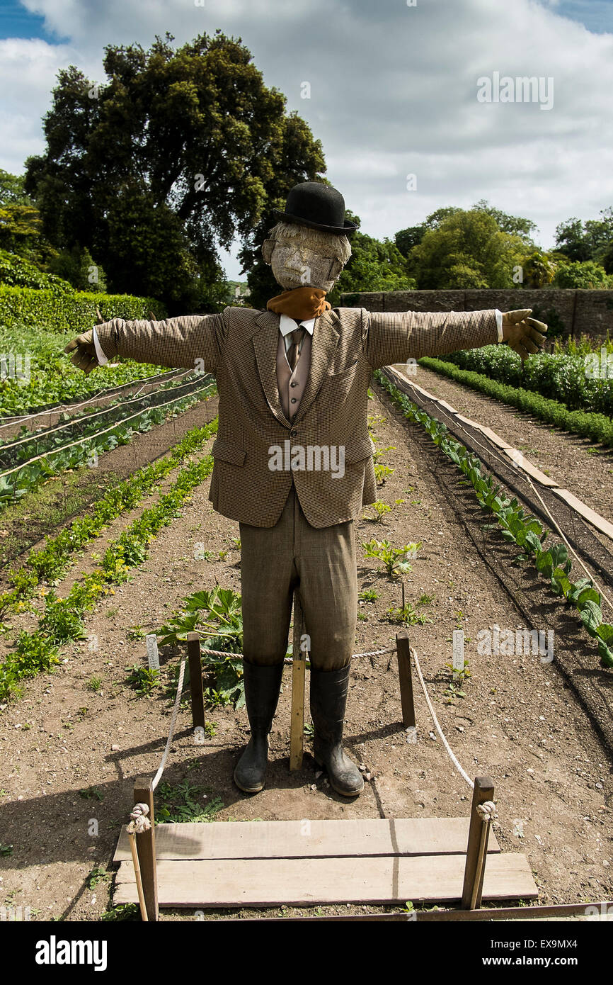 A scarecrow in the vegetable gardens in the Lost Gardens of Heligan in Cornwall. - Stock Image