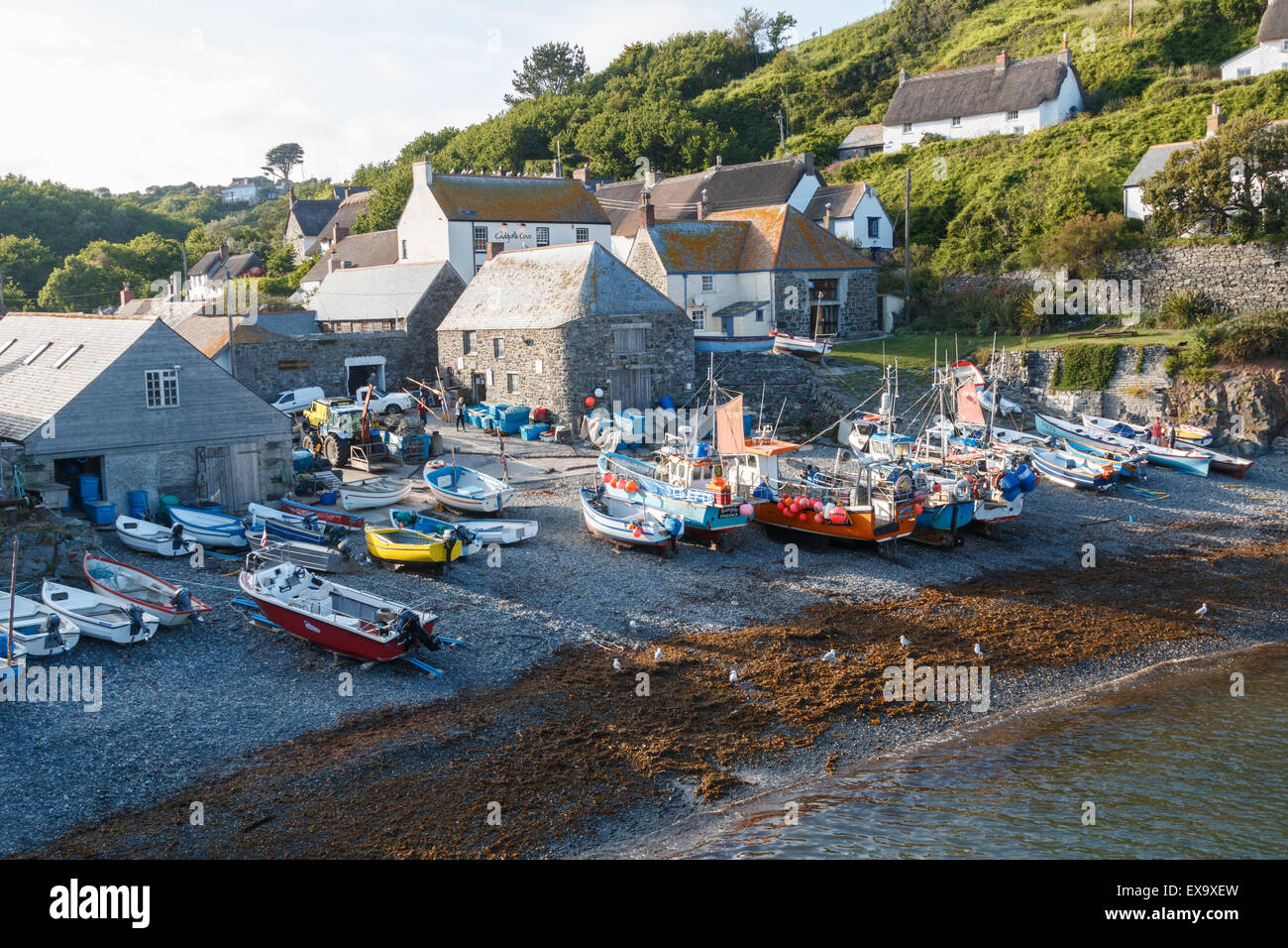 Cadgwith Cove - an unspoilt viallge on the Lizard peninsula has fishing boats drawn up on the beach at high tide. - Stock Image