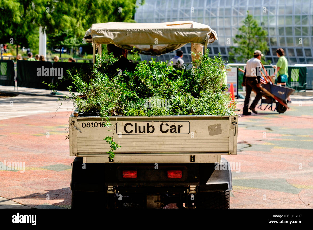 A small truck called a Club Car filled with shrubbery for planting in the Myriad Botanical Gardens in Oklahoma City, - Stock Image