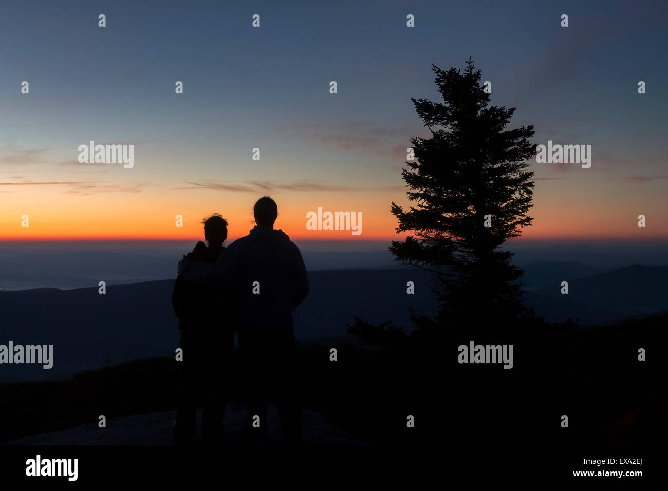 The Silhouettes of two backpackers, dwarfed by a wind swept Red Spruce, look eastward over the Allegheny Plateau - Stock Image