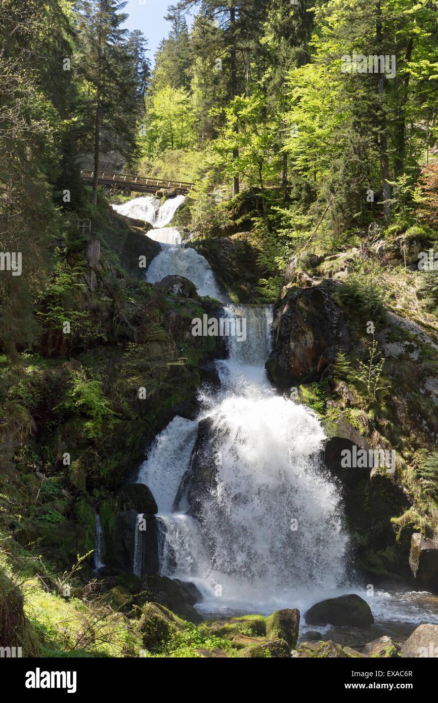 DEU, Deutschland, Baden-Württemberg, Schwarzwald, Triberg, 11.05.2015, Triberg waterfall in Spring Stock Photo