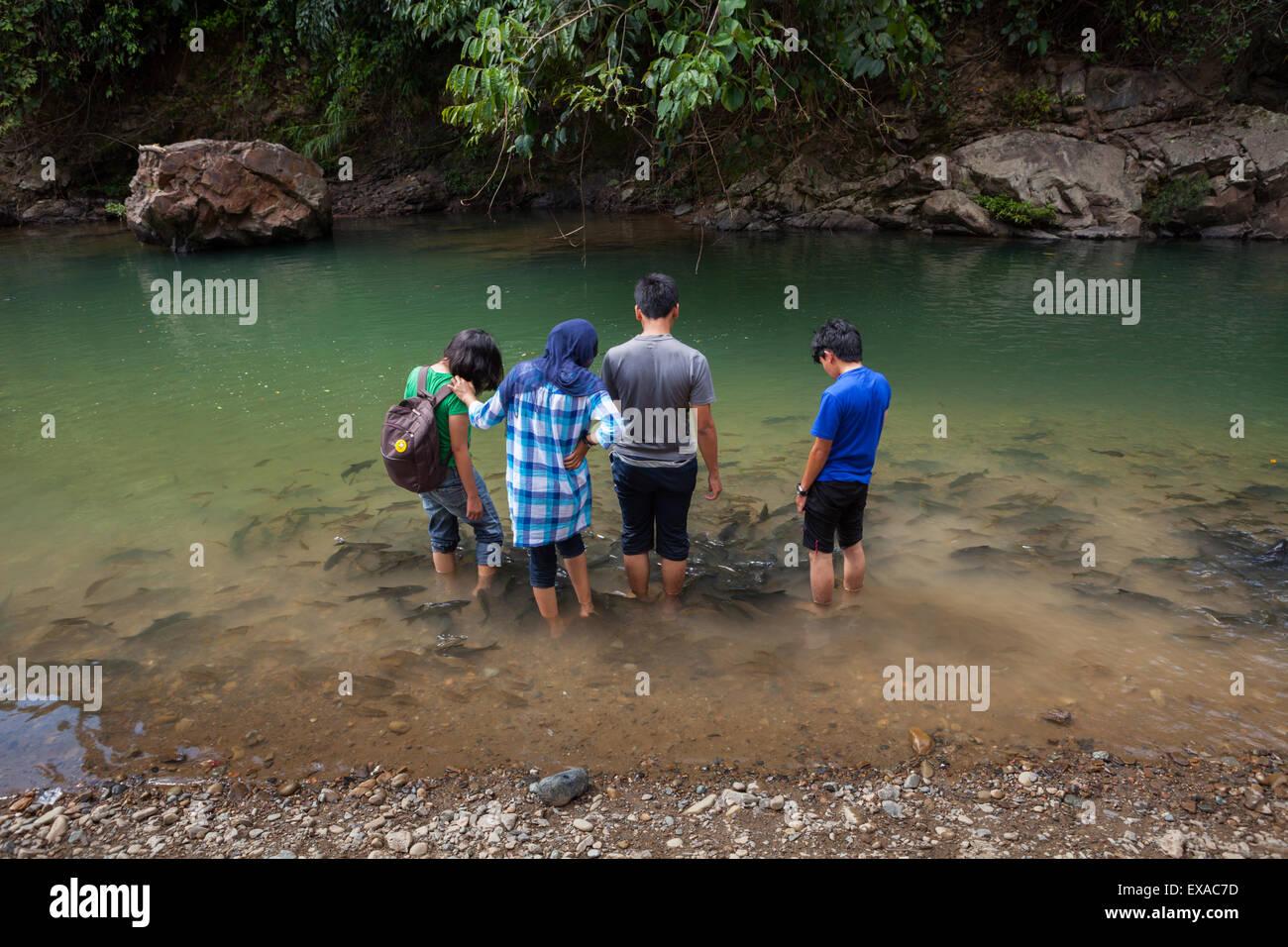 Group of people enjoying fish massage in Kampung Luanti, Sabah, Malaysia. - Stock Image