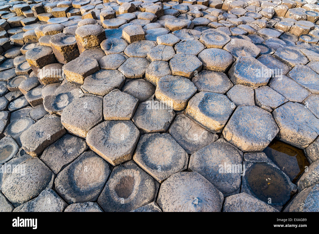 The Giants Causeway, UNESCO World Heritage Site, County Antrim, Ulster, Northern Ireland, United Kingdom, Europe - Stock Image