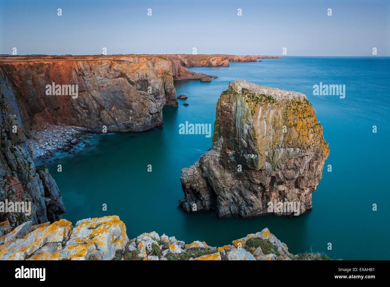 Stack Rocks, Castlemartin, Pembrokeshire, Wales, United Kingdom, Europe - Stock Image