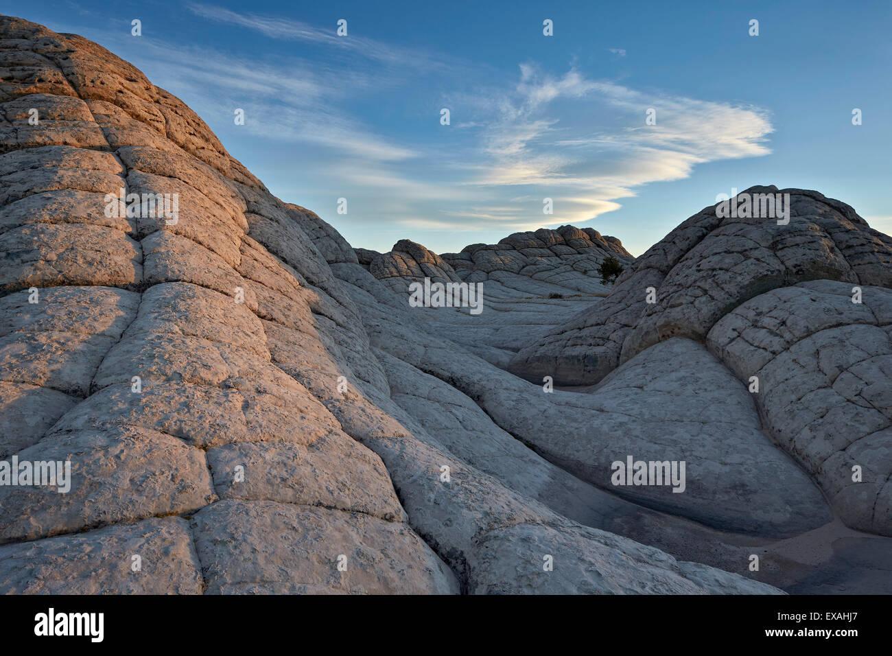 Waves of Brain Rock, White Pocket, Vermilion Cliffs National Monument, Arizona, United States of America, North - Stock Image