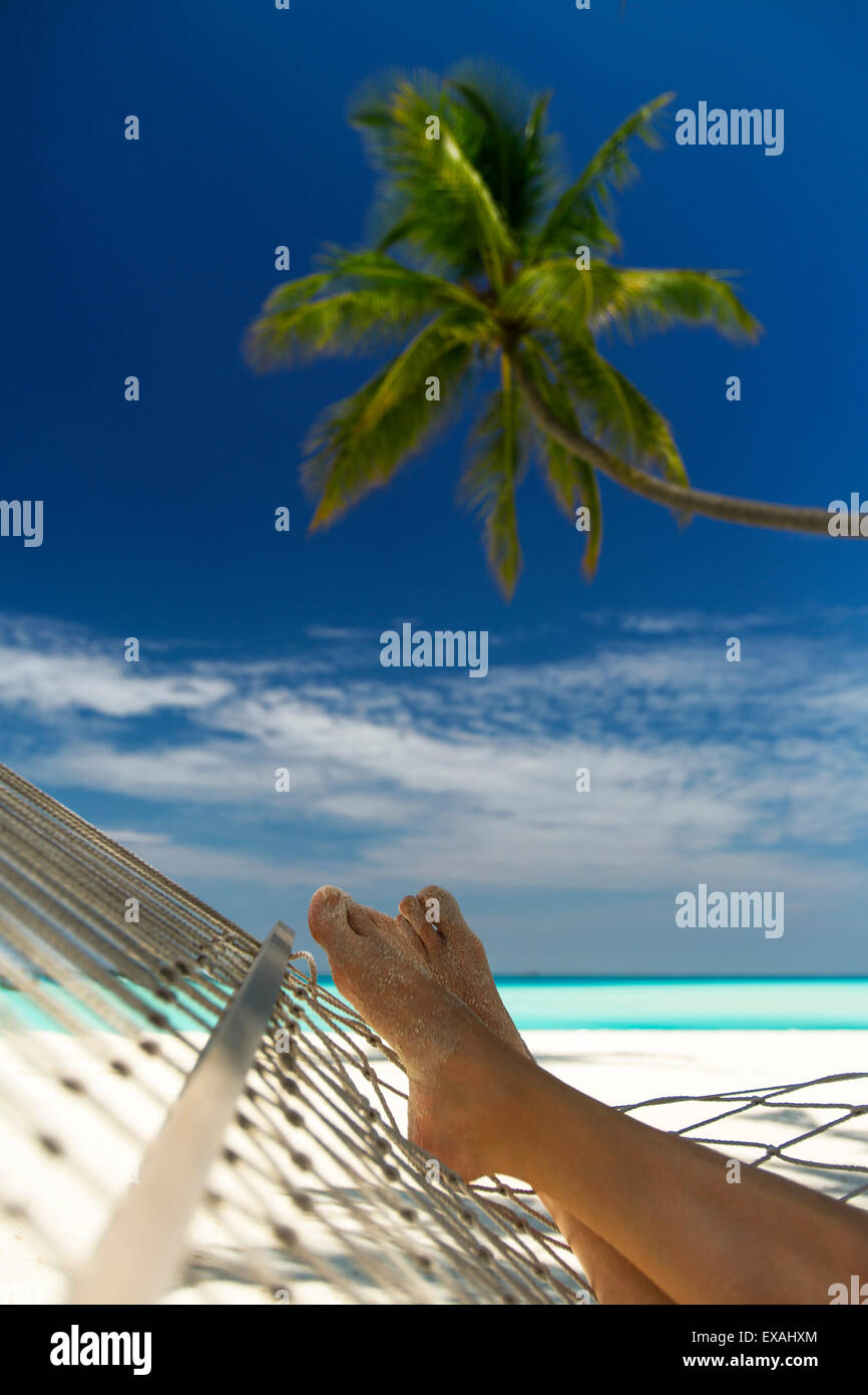Hammock and palm tree, Maldives, Indian Ocean, Asia - Stock Image