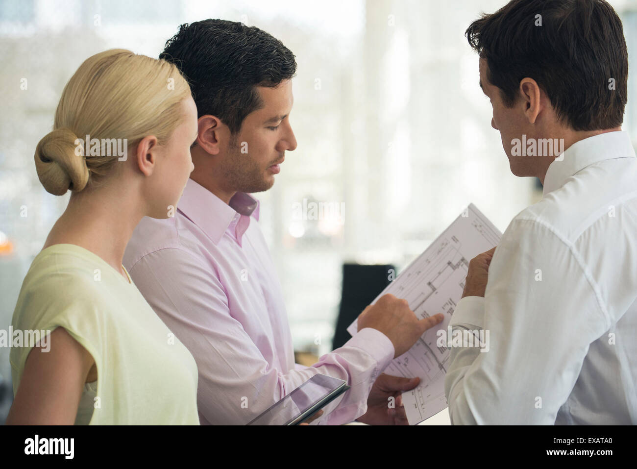 Architects discussing blueprints - Stock Image