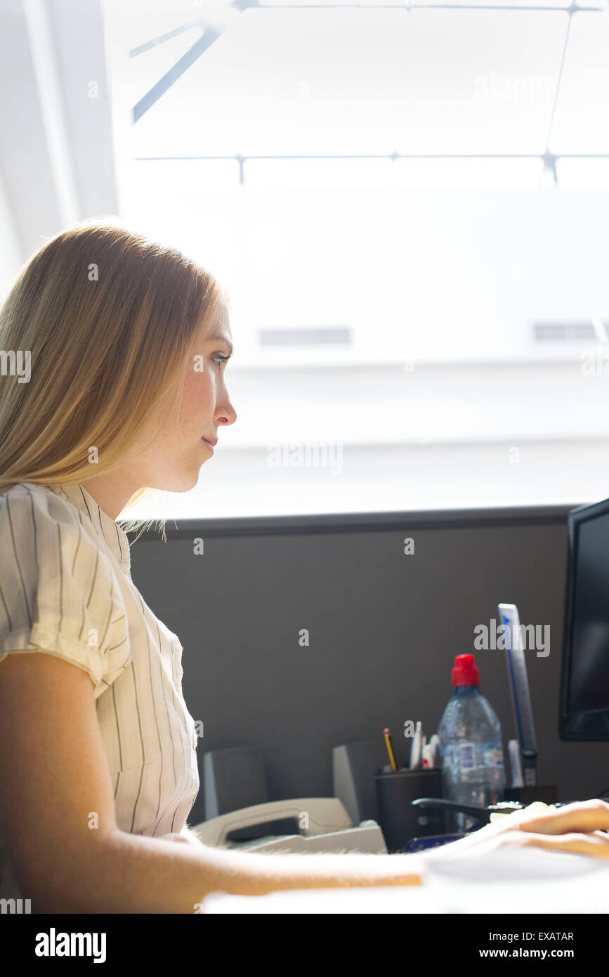 Young woman working intently in office cubicle - Stock Image
