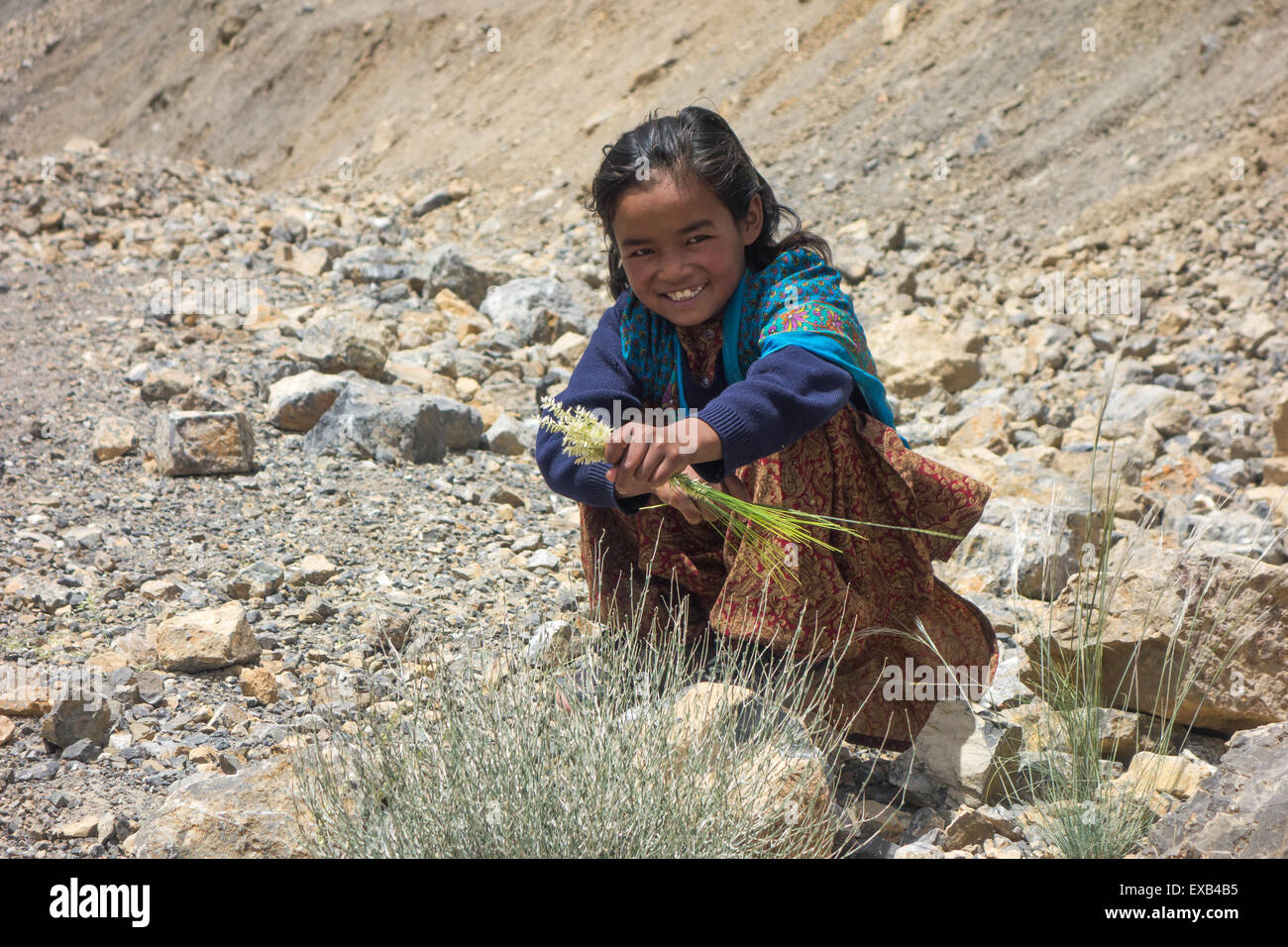 Spiti Valley - young girl from a remote high altitude village in the Spiti Valley, Himachal Pradesh, Indian Himalayas - Stock Image