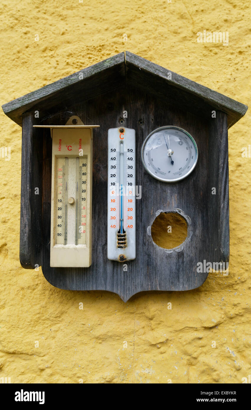 Yellow Flower Hanging Rustic Outdoor Thermometer