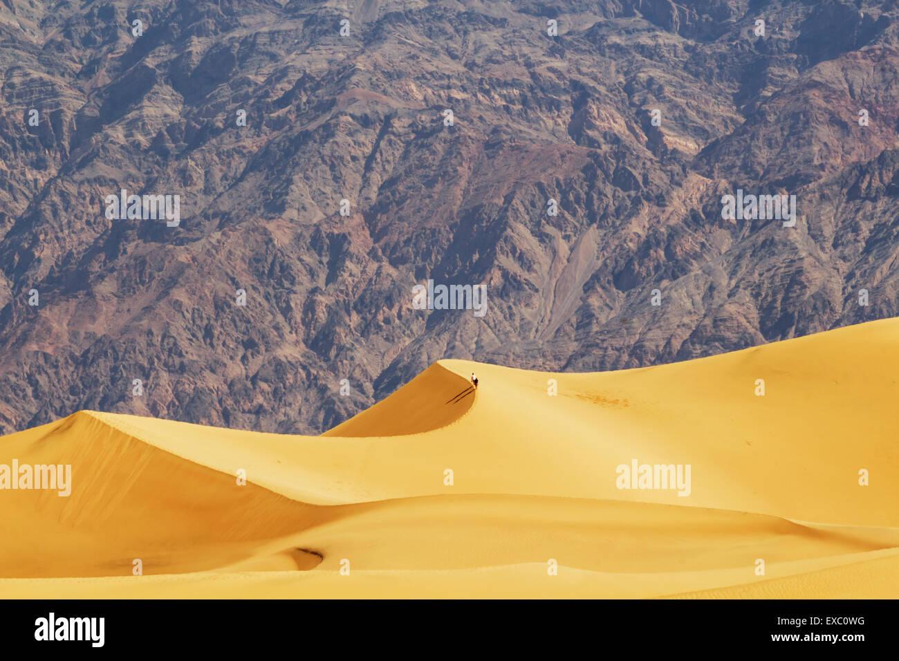 Mesquite sand dunes, Death Valley, California, USA - Stock Image