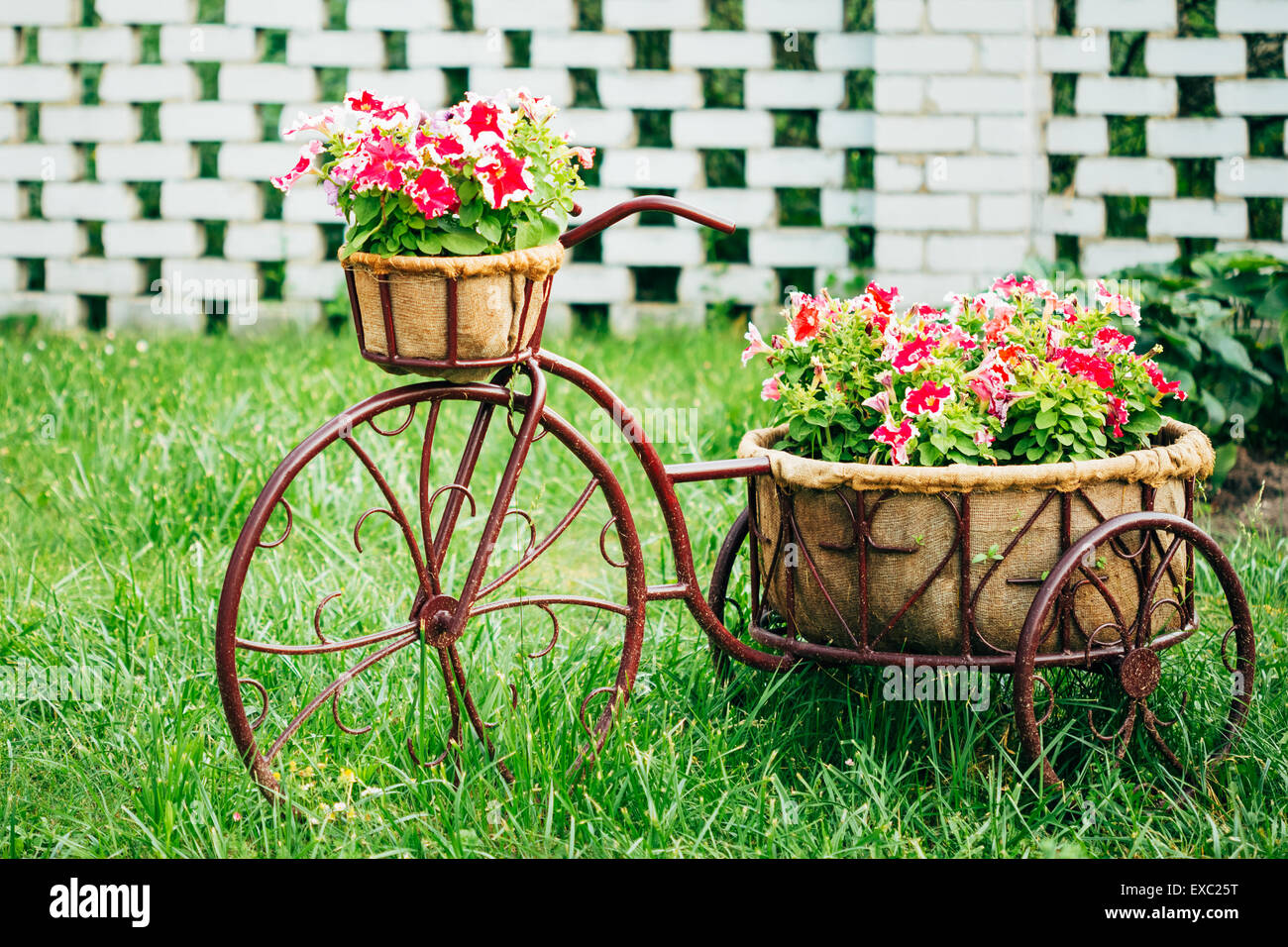 Decorative Vintage Model Old Bicycle Equipped Basket Flowers Garden ...