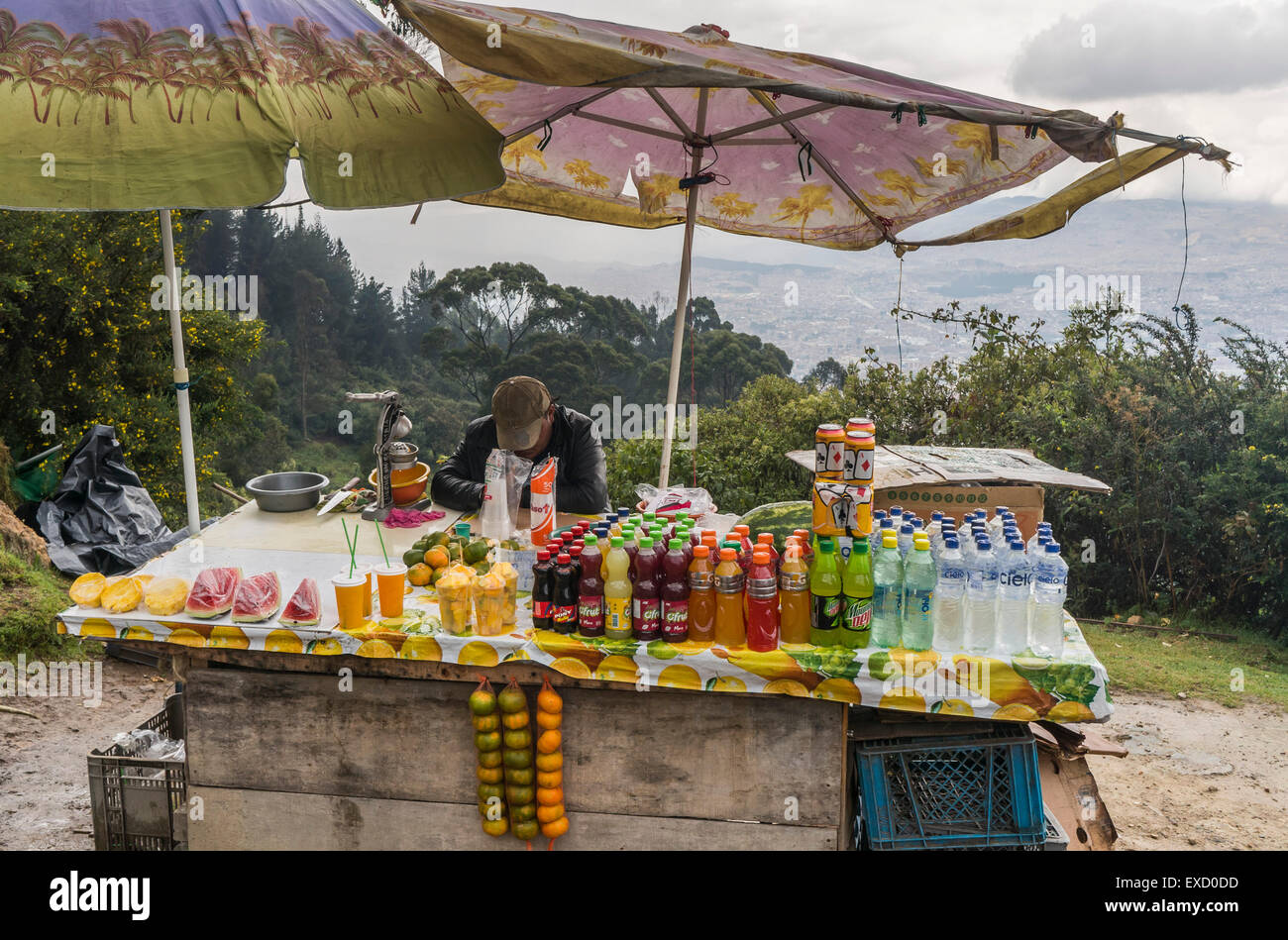 A street vendor asleep in his chair along the popular trail to the top of Cerro Monserrate in Bogota, Colombia. - Stock Image
