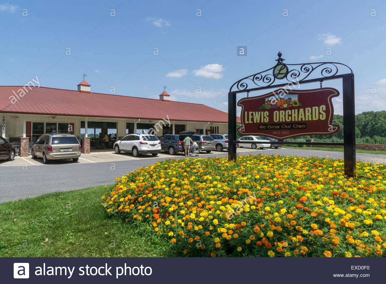 Lewis Orchards farm market along Peachtree Road in Dickerson, Maryland USA - Stock Image