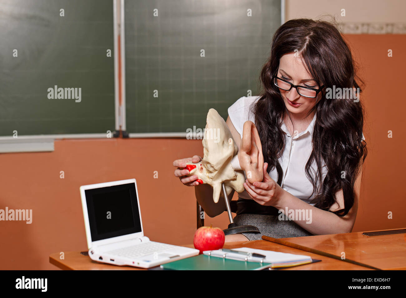 Anatomy Teacher sitting at a desk. Back to school. - Stock Image