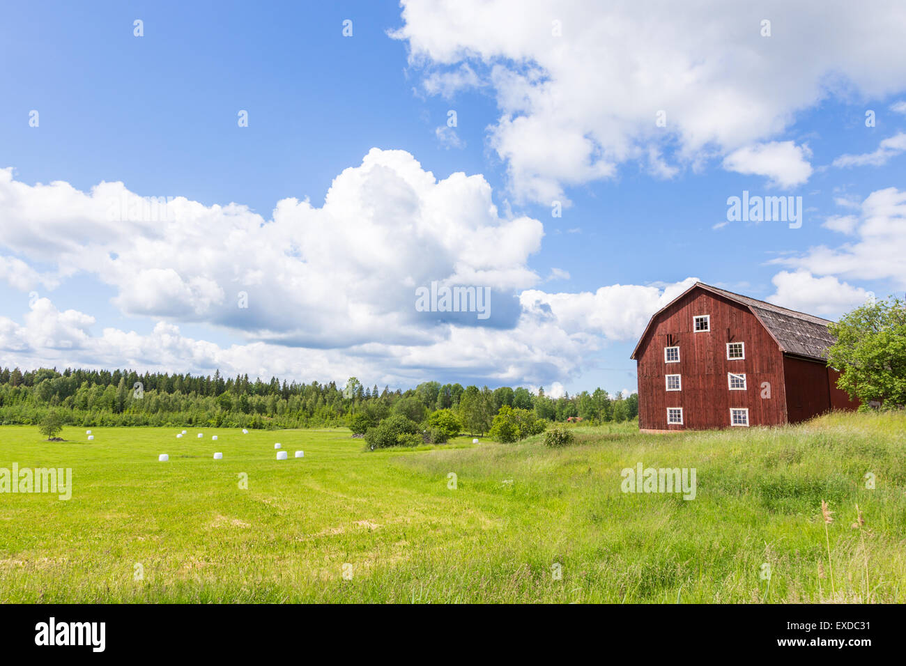 Scenic View of an Old Barn with White Silage Balls with a Blue Sky - Stock Image