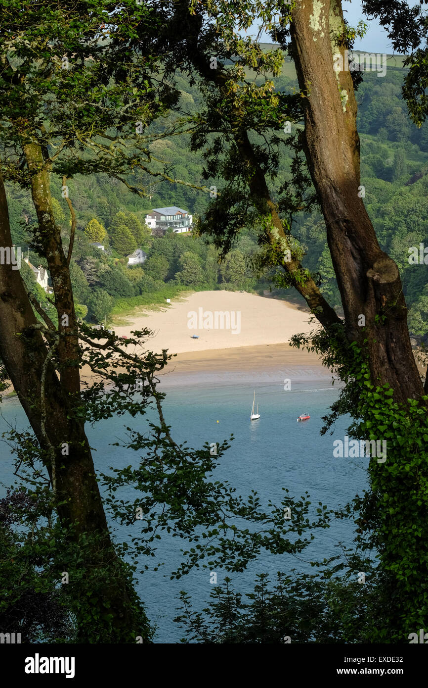 Mill Bay Beach in Devon viewed through trees from Salcombe which is a short ferry ride across the water - Stock Image