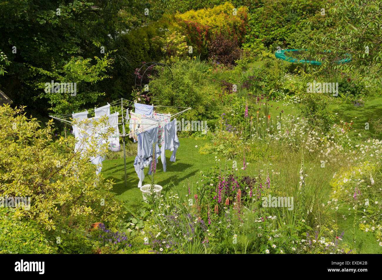 Washing hanging to dry on rotary airer washing line in flower filled family wildlife garden in Scotland, UK - Stock Image