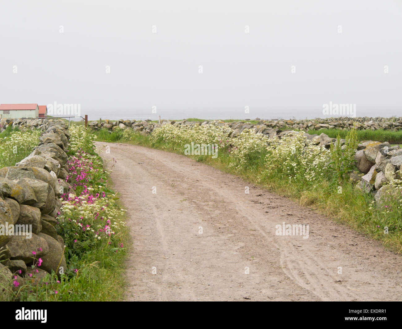 North Sea Cycle Route across Jaeren Norway, river Haa (Hå) , flat agricultural landscape, fog, stonewalls sea - Stock Image