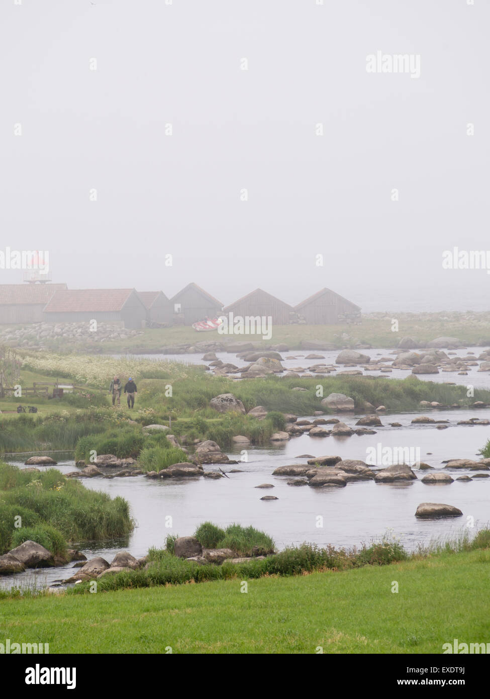 river Haa (Hå) meets the North Sea, flat agricultural landscape, fog, fishing opportunities and a lighthouse, - Stock Image