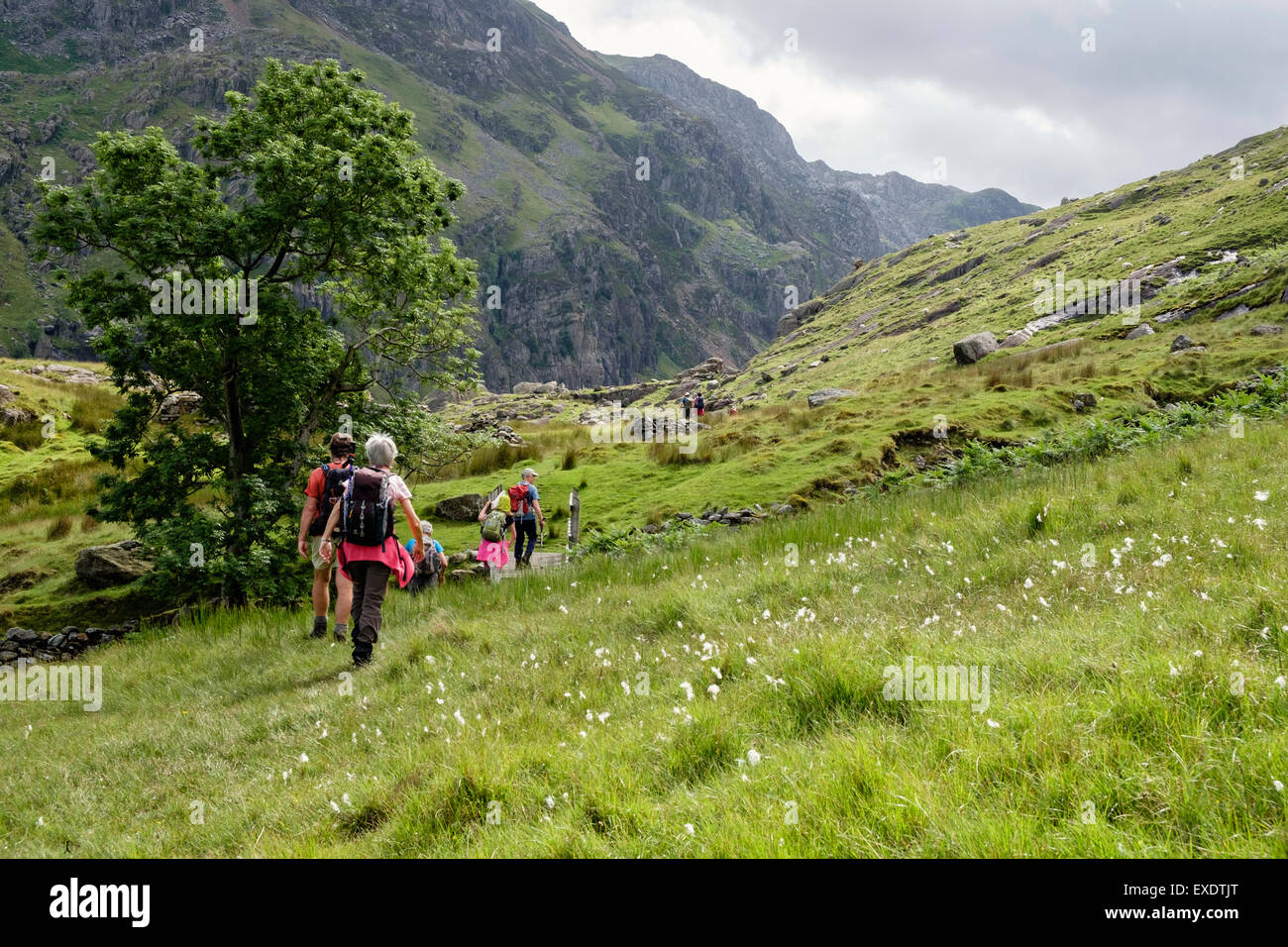 Hikers on new footpath route through Bwlch Llanberis Pass in mountains of Snowdonia National Park, Gwynedd, North - Stock Image
