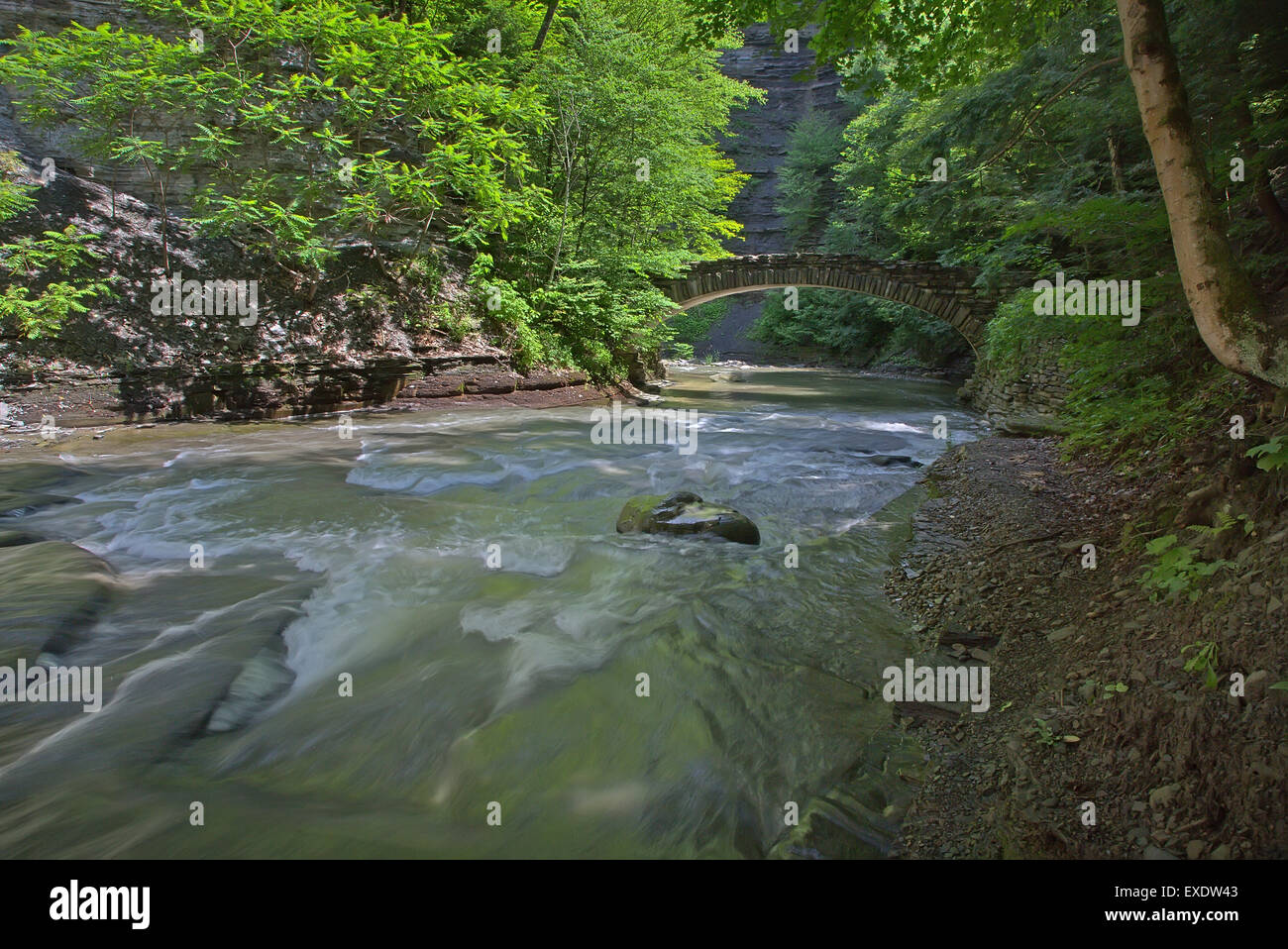 Walking trail bridge over Stony Brook in Stony Brook State Park in New York State - Stock Image