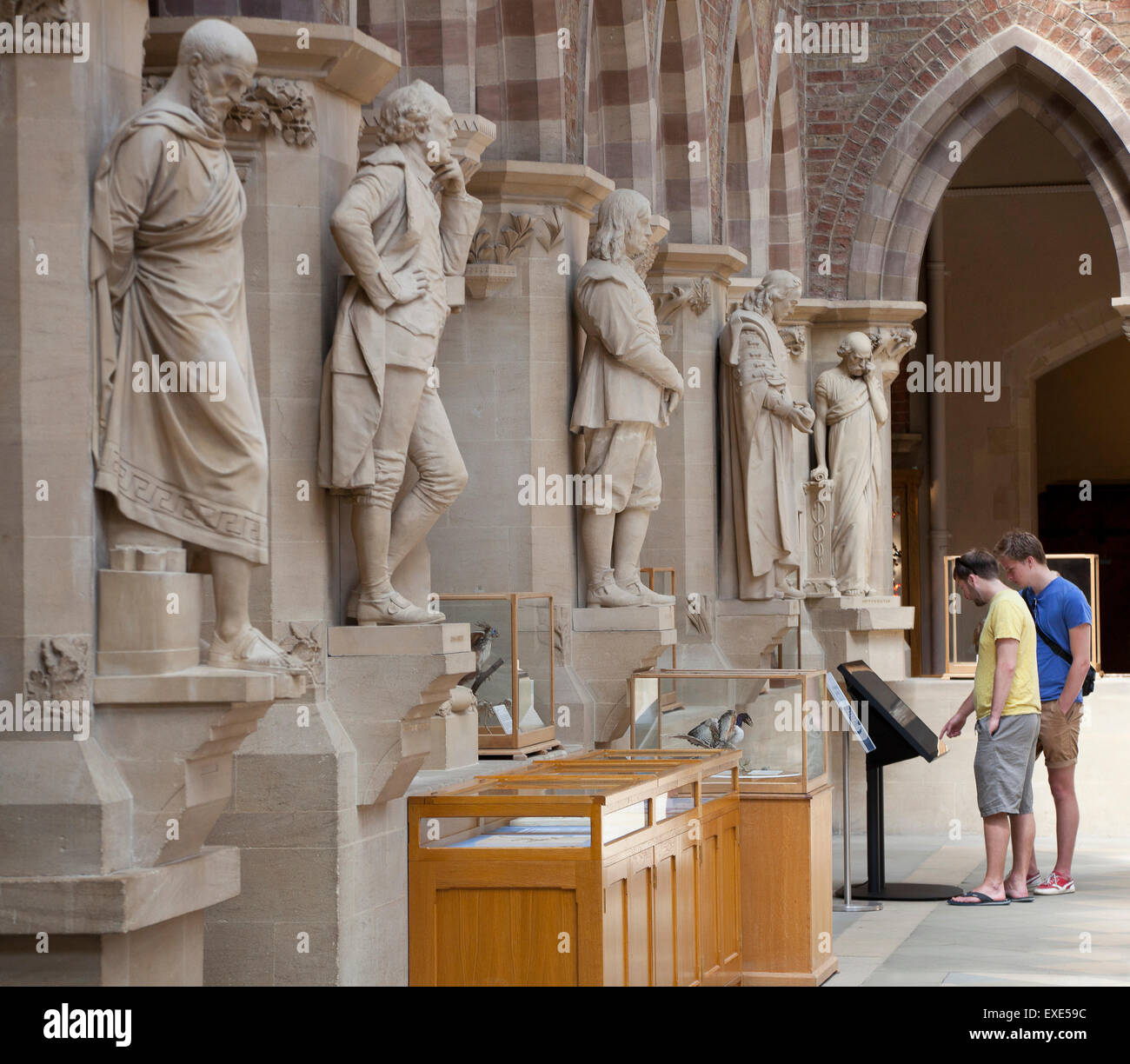 Statues of learned men on display at the Oxford museum of Natural History, Oxford. Visitors using a digital museum - Stock Image