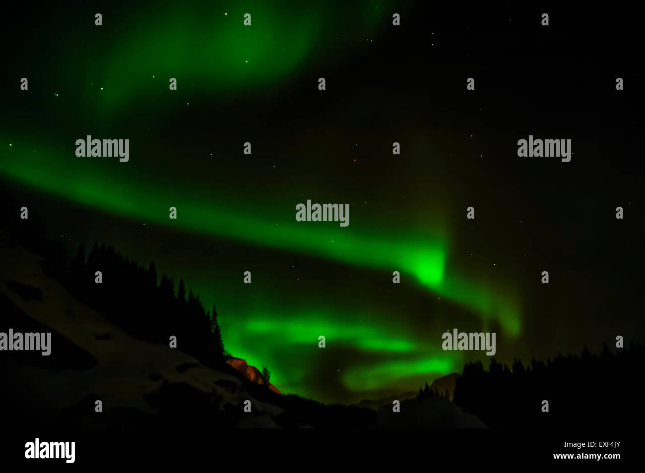 Mountain, forest with Ursa Major and Aurora Borealis (Northern Lights) - Stock Image