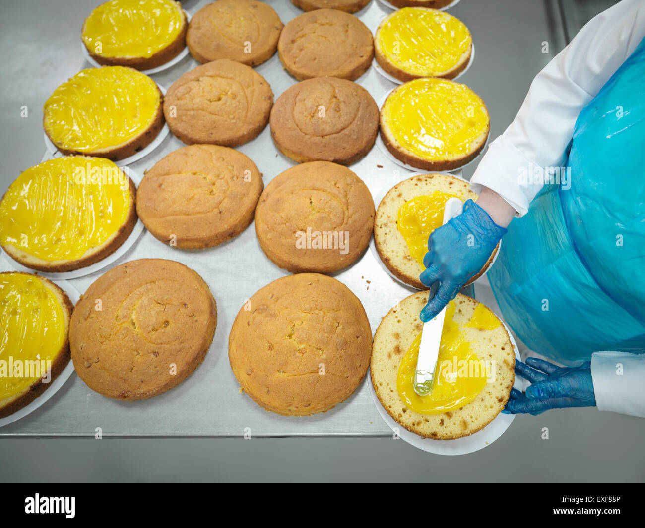 Female worker spreading filling on cakes in cake factory, high angle view - Stock Image