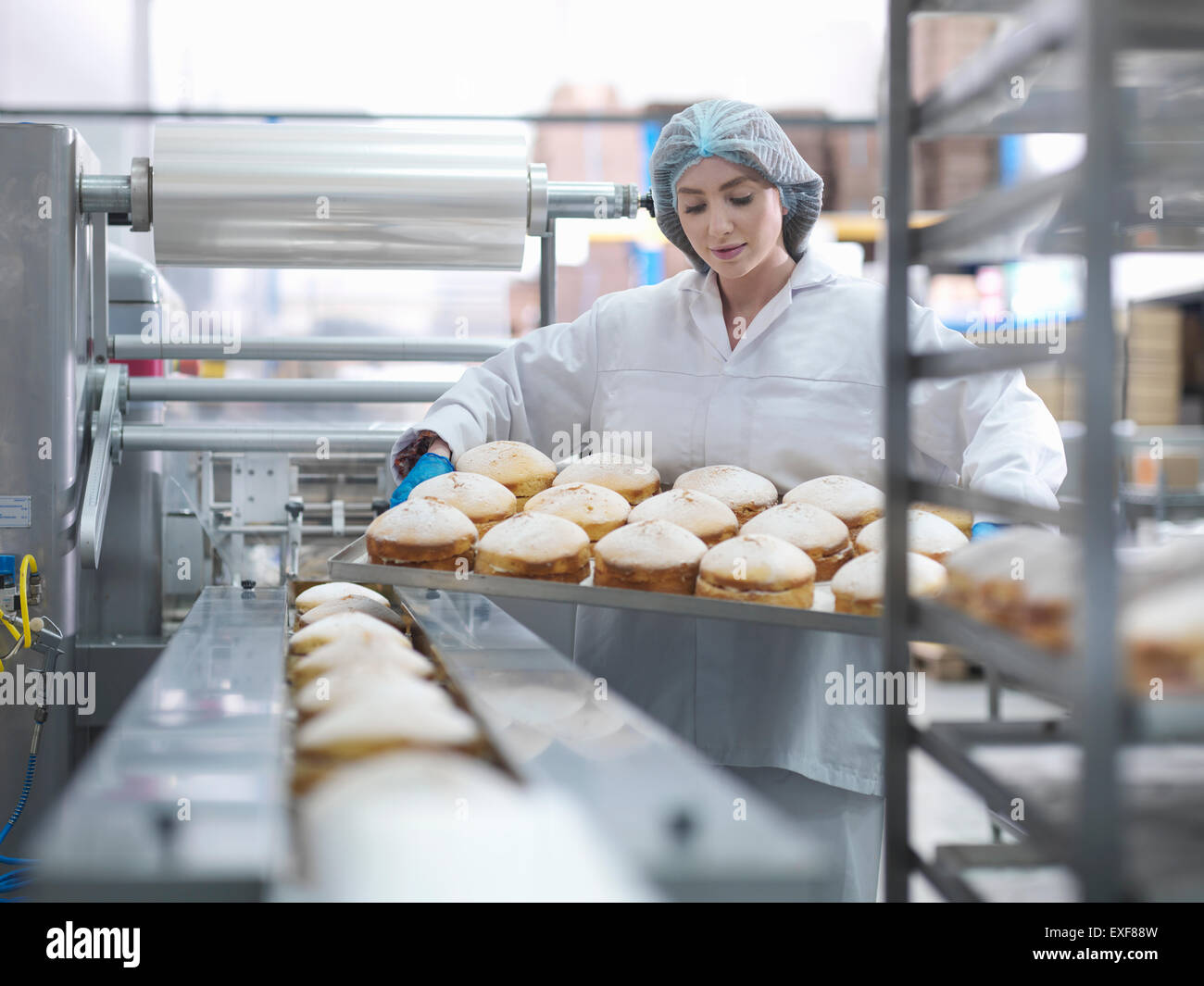 Female baker putting cakes on packaging line in cake factory - Stock Image