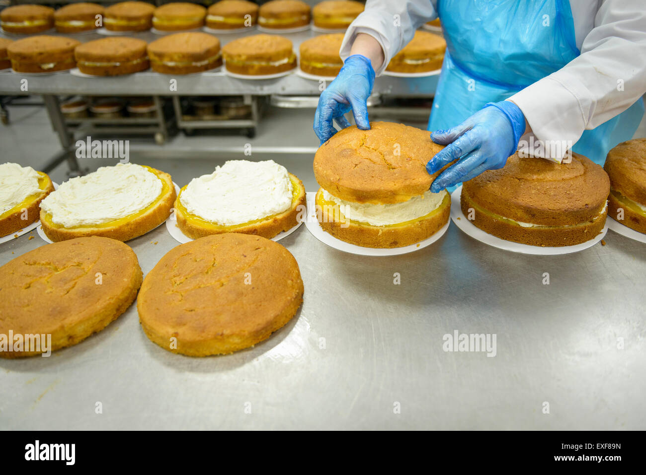 Female worker places top on cake in cake factory, close up - Stock Image