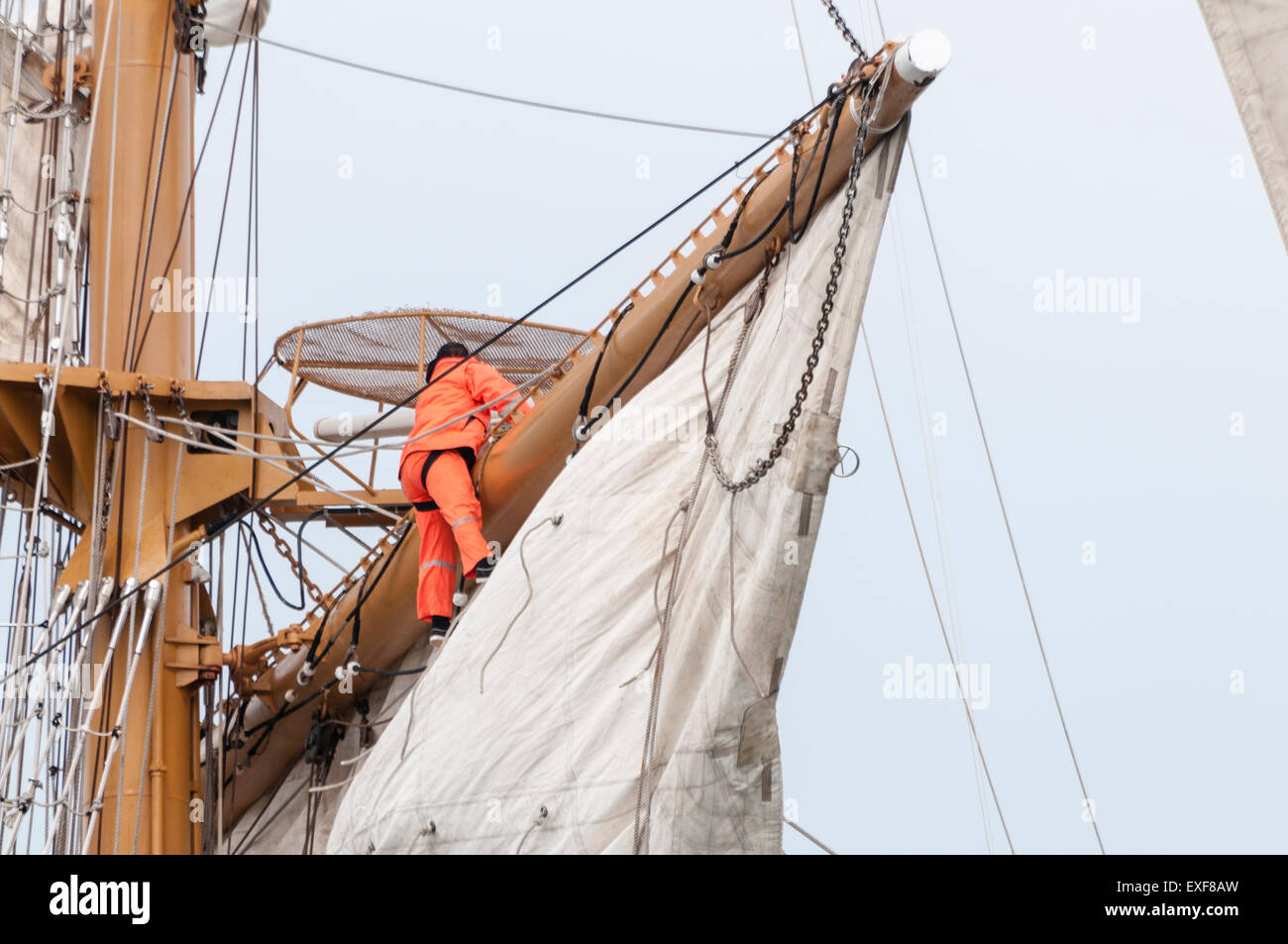 Sailors on board the Ecuadorian tall ship Guayas climb rigging to unfurl the sails. Stock Photo