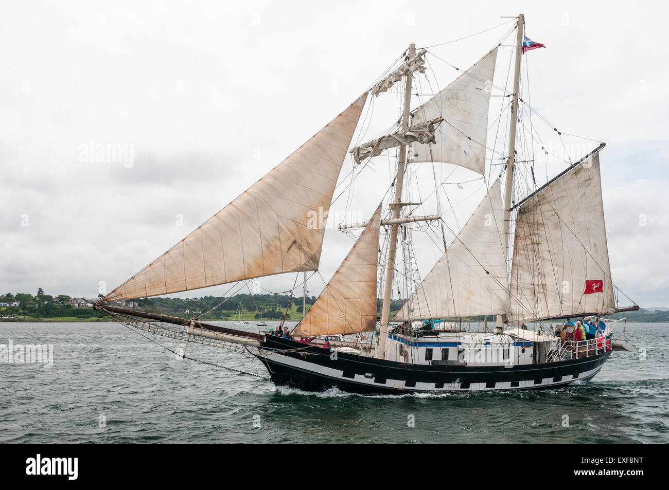 A sailing ship leaves Belfast for the start of the 2015 Tall Ships race - Stock Image