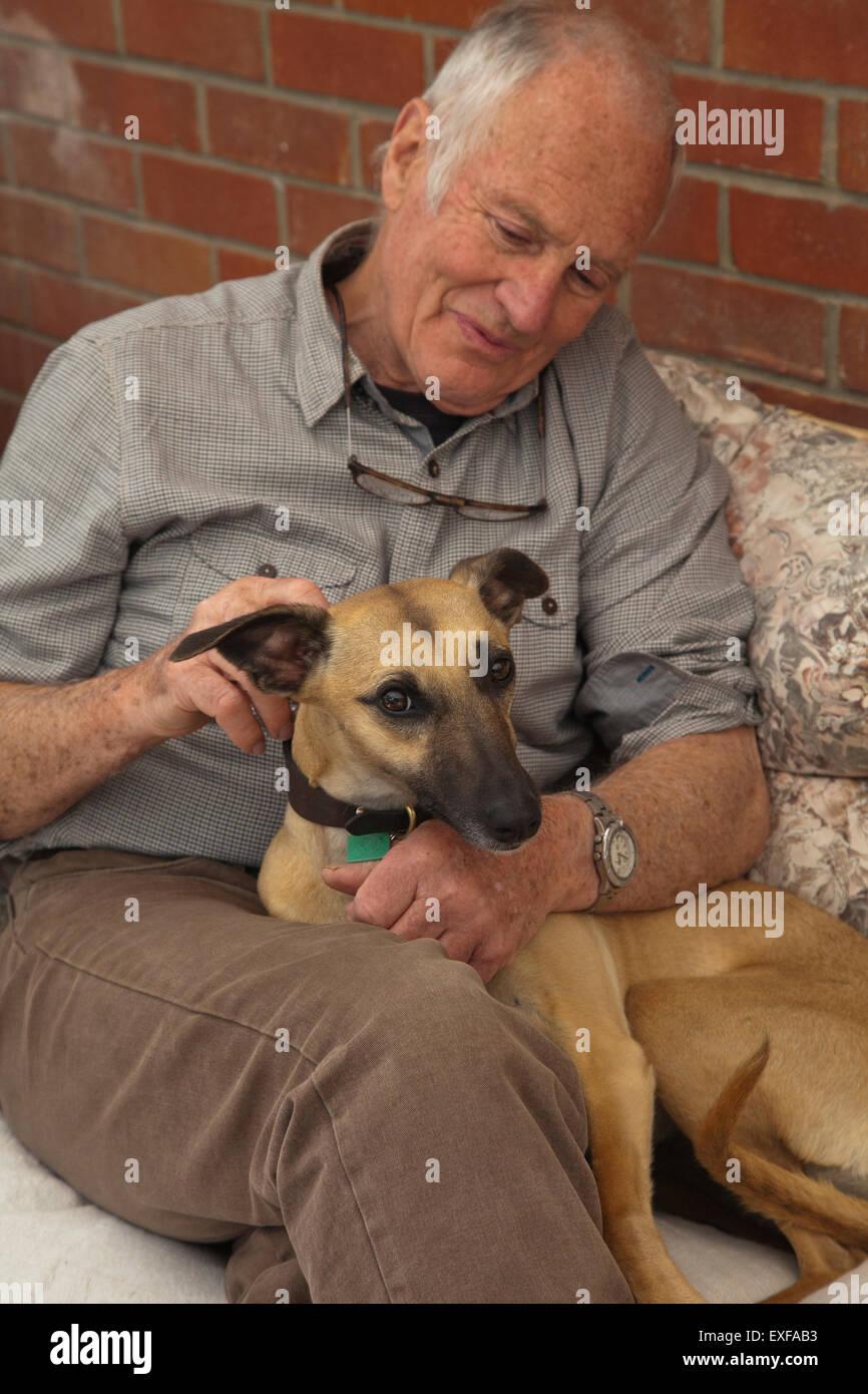 Senior man, sitting, stroking pet dog - Stock Image