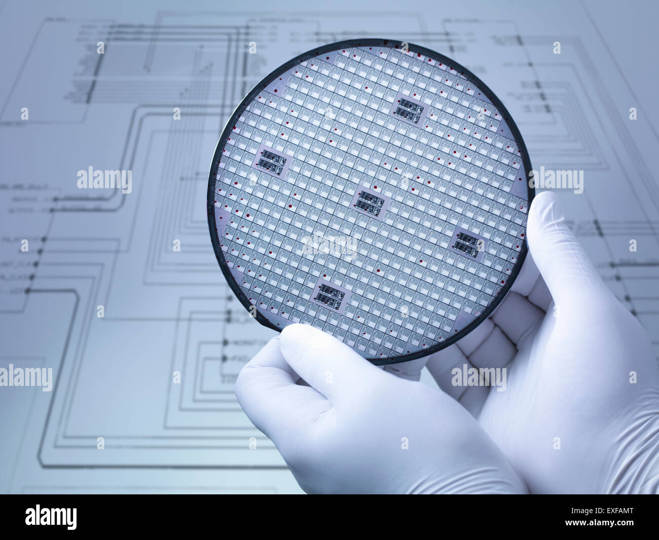 Gloved hands holding silicon wafer in laboratory, close up - Stock Image