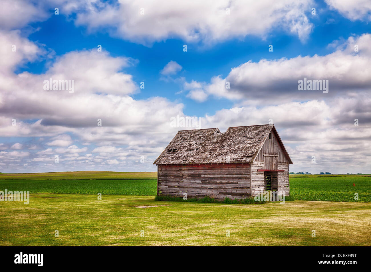 Old Shed In Iowa Field - Stock Image