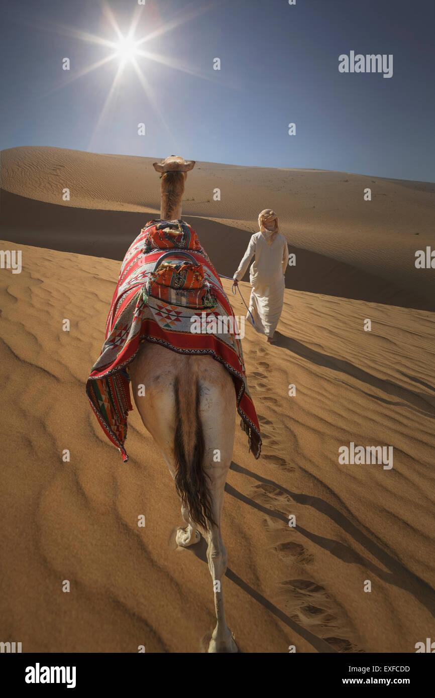 Rear view of bedouin leading camel in desert, Dubai, United Arab Emirates Stock Photo